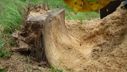 Baumstumpffräse mit Hydraulik F 500H/38
